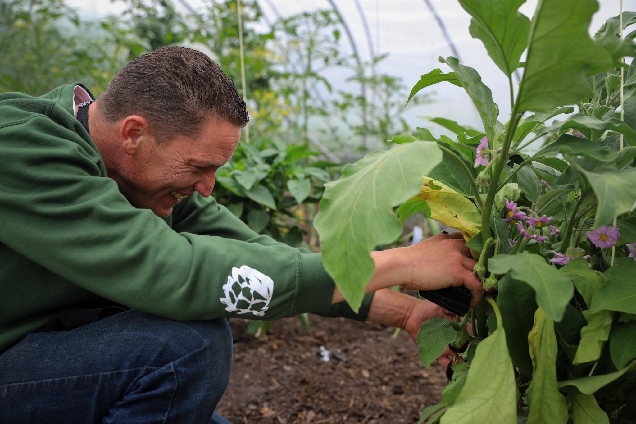 Onze groentespecialist selecteert producten