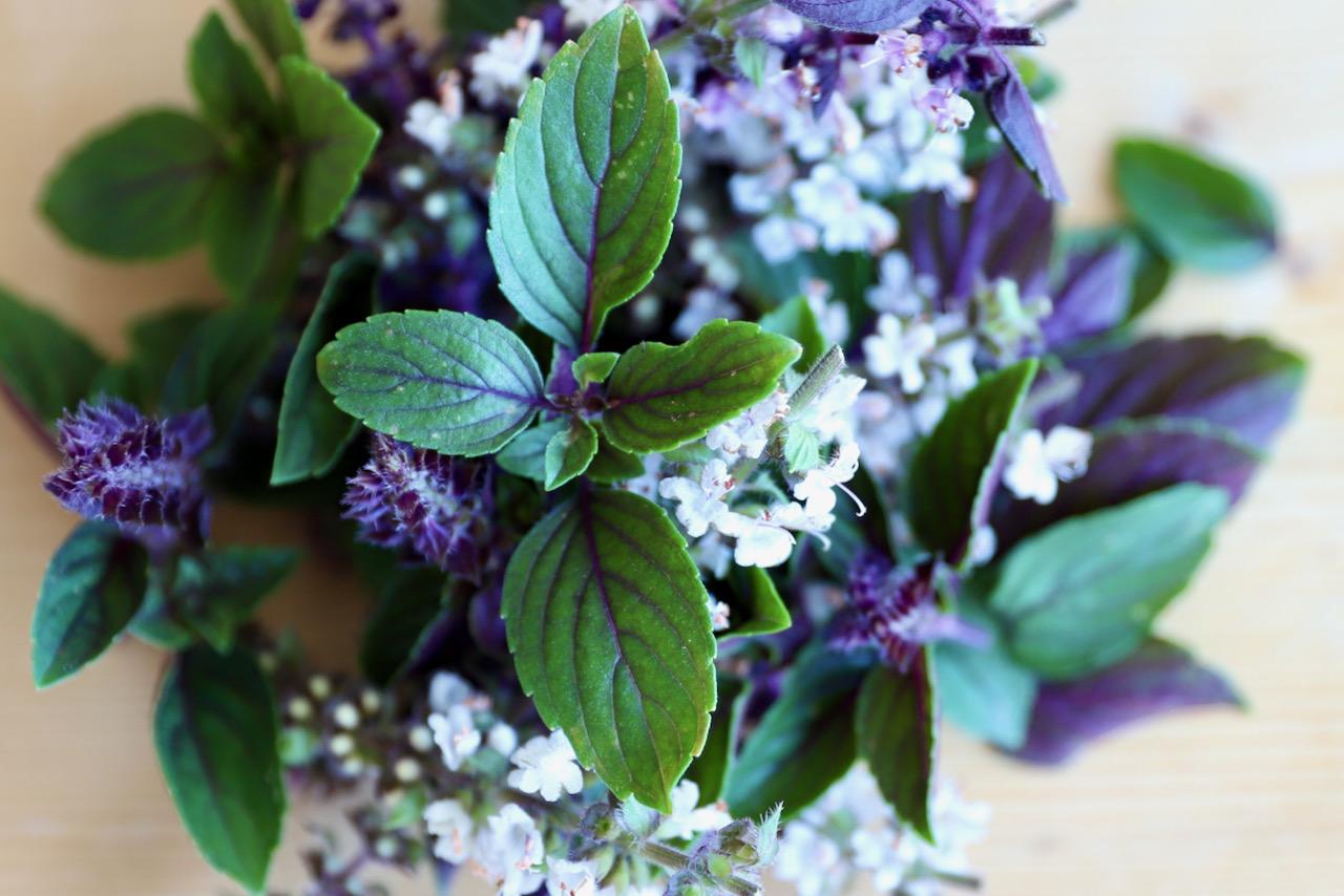 Kruiden & bloemen van Wim Maes